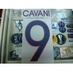 Official CAVANI #9  Paris Saint Germain PSG Away UCL 2015-16 PRINT