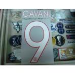 Official CAVANI #9  Paris Saint Germain PSG Home UCL 2015-16 PRINT