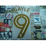 Official GAYLE #9 Newcastle Home EFL 2016-17 PRINT