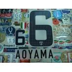 Official AOYAMA #6 KASHIMA ANTLERS Away 2013 J-league PRINT