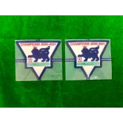 Official English Premier League Champions 2000-01 GOLD Player Size Patches