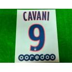 Official CAVANI #9 + OOREDOO PSG 3rd Ligue 1 2019-20 PRINT