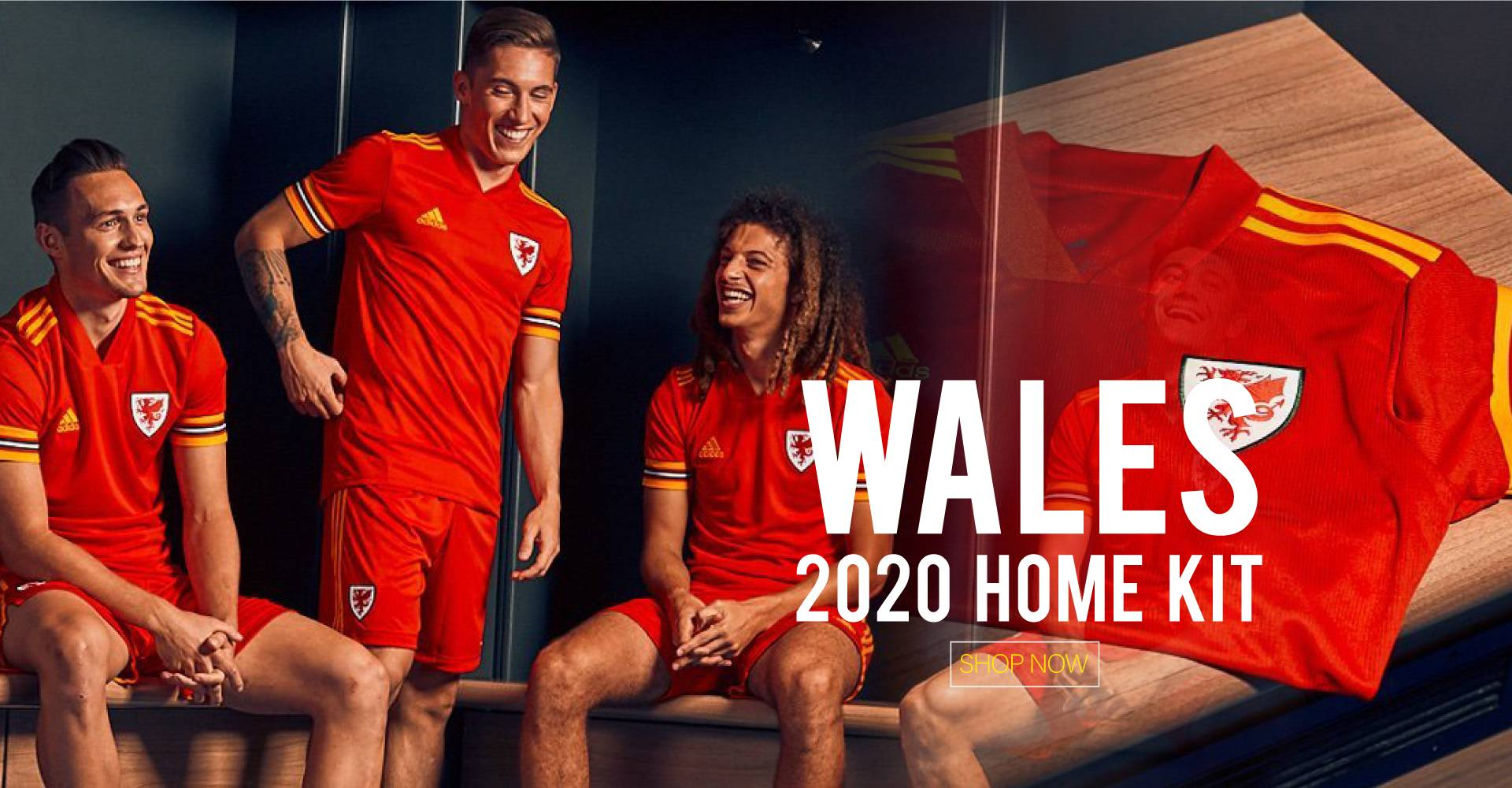 wales 2020 home